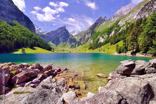 Foto op Plexiglas Bergen Seealpsee im Alpsteingebirge mit Säntis im Hintergrund