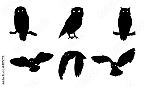 Foto op Aluminium Uilen cartoon Owl Bird Silhouette