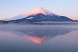 Fototapety 山中湖からの富士山