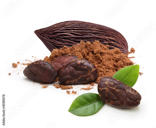 Cacao beans and powder isolated