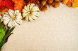 Fall Decor Background for Thanksgiving and Autumn design elements.