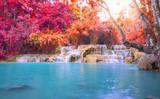 Fotoroleta Waterfall in rain forest (Tat Kuang Si Waterfalls at Luang praba