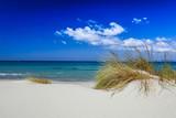 Dune di sabbia e vegetazione in Sardegna