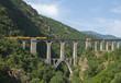 ������, ������: Tren trans pirenaico en Francia