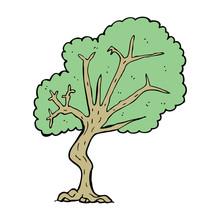 Dessin arbre nu tableaux sur toile tableaux et posters - Dessin arbre nu ...