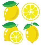 Fototapety Lemon vector illustration