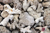 stones, sand, coral, macro, nature