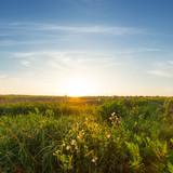 Fototapeta sunset over a prairie