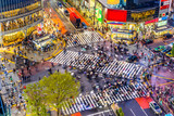 Fototapety Shibuya Crossing in Tokyo