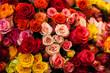 Obrazy na płótnie, fototapety, zdjęcia, fotoobrazy drukowane : beautiful bouquet of multicolored roses
