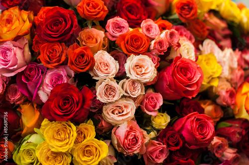 Zdjęcia na płótnie, fototapety, obrazy : beautiful bouquet of multicolored roses