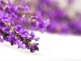 Fototapeta Lavender, Flower, Spa Treatment.