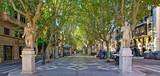 Fototapety Passeig Borne - Palma de Mallorca