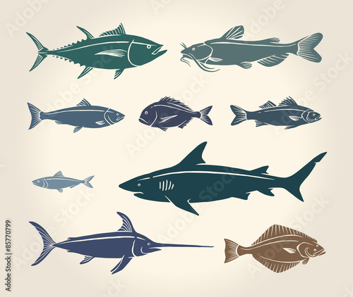 vintage illustration of fish 85770799 naklejki do