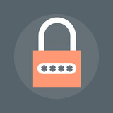 Data Encryption flat style, colorful, vector icon