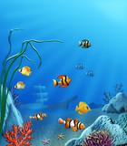 Fototapeta Do akwarium - Głębia © olgra