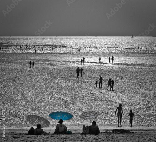 Châtelaillon-plage (Charente maritime) - 85840791