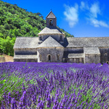 Abbey de Senanque with blooming lavander field,Provence, France