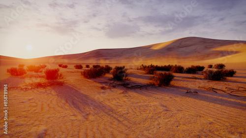 Poster Sunrise or sunset in a desert
