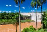 Fotoroleta Iguacu (Iguazu) falls
