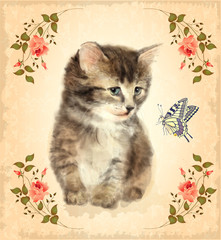 Vintage card with fluffy kitten and butterfly.  Imitation of wat