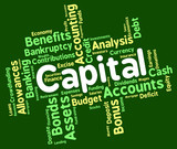 Capital Word Shows Rich Asset And Affluence poster