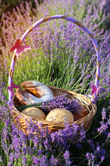 Closeup picture of basket with sweets in purple lavender flowers