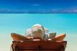 Paradise on the Caribbean Bahamas Maldivian Hawaiian beaches