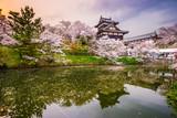 Zamek w Nara Japonia
