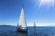 Sailing yacht race. Ship yachts with white sails in the open Sea. Luxury boats.