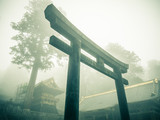 Fototapeta Nikko