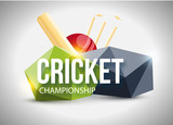 vector illustration of Cricket concept