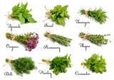 Collection of cooking herbs and spices. - 86314501