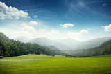Fototapety green meadow and hills with forest