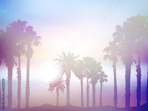 Fototapeta Summer palm tree landscape with retro effect