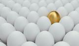 unikátní zlaté vejce