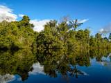 Fototapeta Amazon river