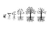 Tree Grow in Various Stage - Vector Illustration - 86476965