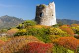 Fototapety Coastal Tower in Porto Giunco, Villasimius, Sardinia, Italy