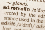 Dictionary definition of word adrenaline poster