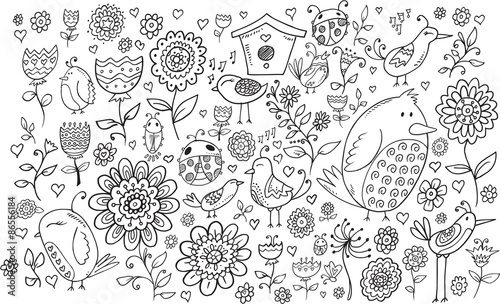 Fotobehang Cartoon draw Doodle Flowers and Birds Vector Set