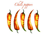 Watercolor chili peppers. Spicy food illustration.