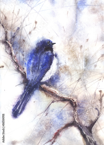Water color drawing of a bird © Alexey Kuznetsov