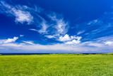 海岸線と草原