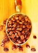 Coffee beans in metal scoop.Filtered image: warm cross processed vintage effect.