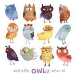 Fototapety watercolor vector owls set