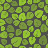 Fototapety Seamless leaves pattern