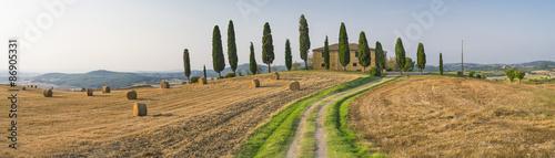 Fototapeta road to the farm in Tuscany in Italy