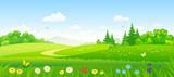 Fototapety Forest fields