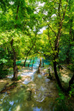 idyllic scenario with a mountain river in the forest poster